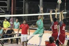 sports7